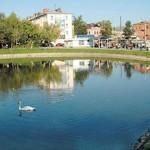 Белый пруд