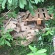 Тонну протухших куриц выбросили у реки в Сергиево-Посадском районе