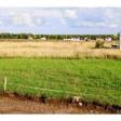 Сергиево-Посадский район в пятерке муниципалитетов, выделивших наибольшее количество земельных участков многодетным