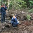 В лесу около Краснозаводска нашли гранаты