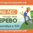 Сергиевопосадцы будут сажать деревья 22 сентября