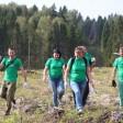 Сажали всем Сергиево-Посадским районом наш лес