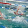 """Более 170 пловцов участвовали в """"Осенних стартах"""""""