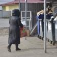 Разделяй на два. В Сергиево-Посадском районе вводится новая система сбора мусора