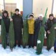 Многодетные мамы получили елки от общественников Сергиева Посада