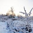 Погода в Сергиевом Посаде: ожидаем потепление