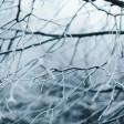 """7 и 8 марта в Подмосковье объявлен """"желтый"""" уровень погодной опасности"""