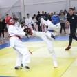 Борьба врукопашную: в Пересвете прошел областной турнир по рукопашному бою
