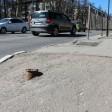 Штырь возле пешеходного перехода в центре Сергиева Посада стал настоящей проблемой для горожан