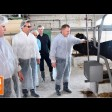 В Фёдоровском наращивают дойное стадо