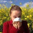 Начихать на аллергию