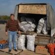 7  льготных точек для торговли сезонными овощами и фруктами выделили в Сергиево-Посадском городском округе