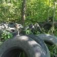 Свалку с 8 тоннами автомобильных шин обнаружили в Сергиевом Посаде