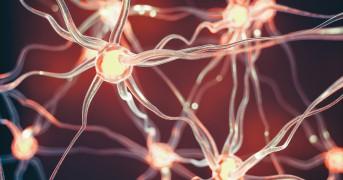Connected nerve cells scientific background.