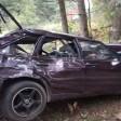 Трое погибли в аварии в Самотовино