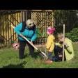 21 сентября каждый сможет посадить своё дерево