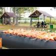 Пикниковая зона на Ваулинской плотине: не только летом, но и зимой