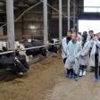 Проект по развитию промышленного туризма стартовал в Сергиево-Посадском округе