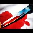 В Сергиево-Посадском округе возбуждено уголовное дело по факту убийства местного жителя