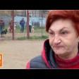 Елена Цыганова: «Сейчас хозяева служат собакам»