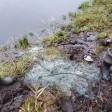 Сети уничтожили, рыбу отпустили