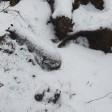 Авиабомбу рядом с теплотрассой нашли в Краснозаводске