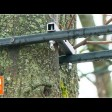 Крепления демонтировать, деревья лечить