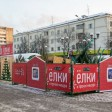 Ёлочные базары начнут свою работу с 15-го декабря