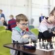 Победы сергиевопосадцев на командном чемпионате Московской области