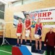 Сергиевопосадские борцы взяли серебро на турнире памяти лётчика Сергея Пичугина