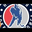 Игры Ночной хоккейной лиги начались в Сергиево-Посадском округе