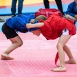 Двадцать пять видов боевых искусств разных народов включат в программу фестиваля «Русский мир»