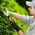Как выбрать кусторез для сада