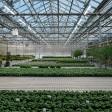Исследования направлены на снижение рисков для сельского хозяйства в контролируемой среде