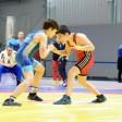 Двое сергиевопосадских борцов победили в областном первенстве