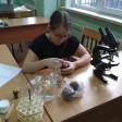 Региональный этап чемпионата молодых профессионалов WorldSkills Russia пройдет в Сергиево-Посадском аграрном колледже