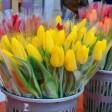 Места праздничной торговли цветами в Сергиево-Посадском округе
