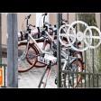 Велошеринг вновь доступен в Сергиевом Посаде