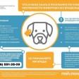 Что нужно знать о программе регулирования численности животных без владельцев?