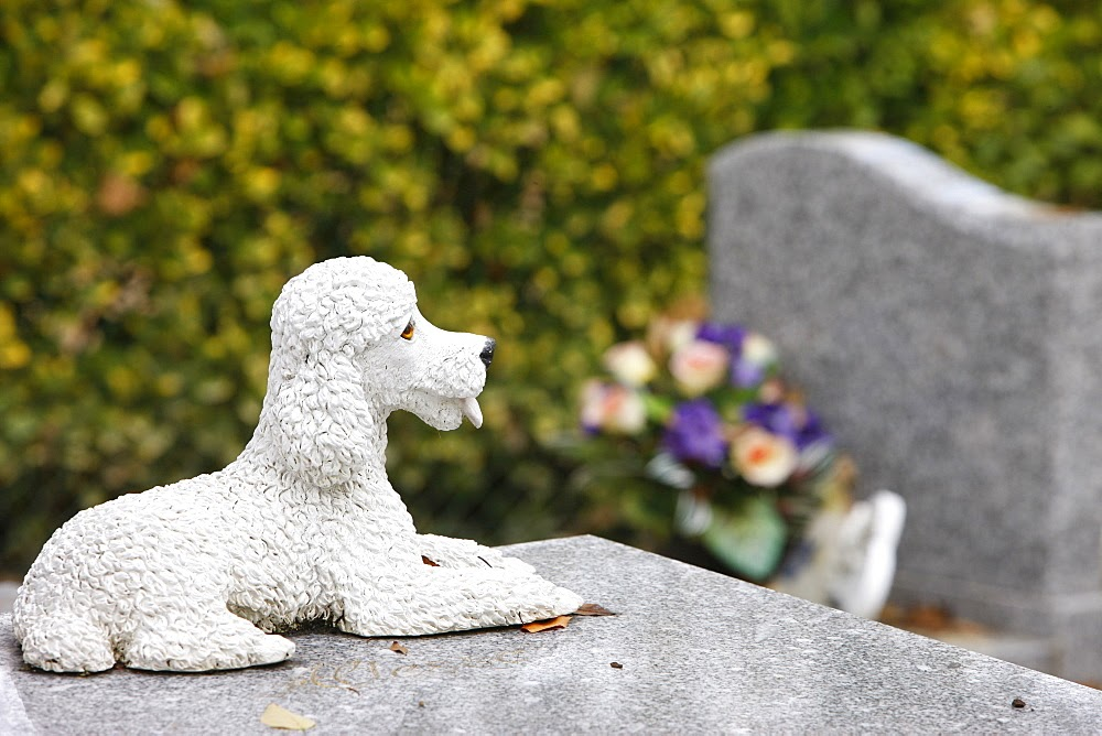 Asnieres animal cemetery, Asnieres, Hauts de Seine, France, Europe