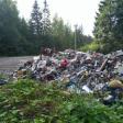Несанкционированный сброс 52 кубометров мусора пресечён в Сергиево-Посадском округе