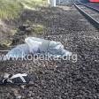 Останки погибшей собирали по всей станции. Машинист сообщает о двух сбитых