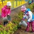 В Сергиевом-Посаде в рамках Всероссийской акции «Сохраним лес» в сентябре состоятся посадки деревьев на 2-х лесных и более чем 20 городских площадках