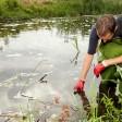 Особенности и актуальность инженерно-экологических исследований в Саратове и Владимире
