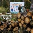 Музей начинается с чистого леса