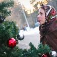 Свыше 1 тыс елок появятся в общественных местах и дворах Подмосковья
