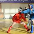 Сергиевопосадские борцы заняли второе место в командном зачёте чемпионата Московской области по боевому самбо
