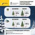 Как правильно провезти новогоднюю ёлку в общественном транспорте Московской области