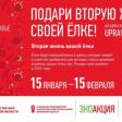 15 января начинают работу пункты приёма ёлок: в Сергиевом Посаде 3 адреса
