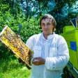 Мёд премиум класса на пользу организму